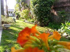 Jardín Urbano - Lomas de Zamora