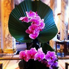 This week's very nice flower composition at Hotel Brighton Paris <3