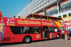 Buses turísticos de dos pisos.