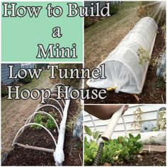 The Homestead Survival | How to Build a Mini Low Tunnel Hoop House | Gardening - DIY Project - Homesteading http://thehomesteadsurvival.com