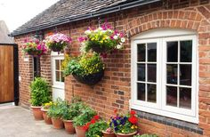Flush casement windows Suffolk, Essex and Norfolk - The Burgess Group Green Windows, Sash Windows, Cottage Exterior, Casement Windows, Window Design, Norfolk, Backyard, Outdoor Structures, Construction