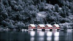 Norway - fjords