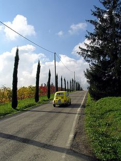 Birthplace of authentic traditional balsamic vinegar: Modena, Emilia-Romagna, Italy
