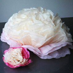 Peony, Paper Flowers, Bloom, Create, Rose, Pink, Peony Flower, Roses