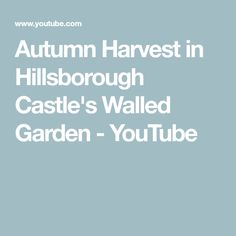 Autumn has arrived at Hillsborough Castle and our dedicated Walled Garden team are busy bringing in the harvest. From rare heritage varieties to unusual mode. Hillsborough Castle, Victorian Gardens, Walled Garden, Castle Wall, Autumn Harvest, Gardening, Youtube, Kitchen, Fall Harvest