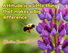 Attitude is a little thing that makes a big difference. / Winston Churchill