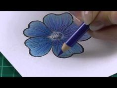 Colouring technique with coloured pencils flowers - YouTube