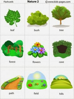 Kids Pages - Flashcards Learning English For Kids, English Language Learning, Teaching English, English Tips, English Study, English Lessons, English Vocabulary, English Grammar, Flashcards For Kids