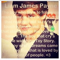 Liam James Payne. The boy who try's to follow as many fans as he can. The boy that reaches out to try to touch a fans hand. The boy that stands up for his love from haters. The boy that cries while watching Toy Story. The boy who's dream came true. The boy that is loved by millions <3