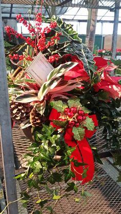 $55 Christmas Planter
