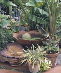 Simple ways to add water to the garden. Read the full article athttp://www.finegardening.com/how-to/articles/simple-ways-add-water-garden.aspx