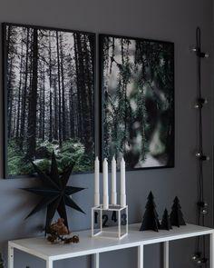 Windows, Wood, Nature, Madeira, Woodwind Instrument, Wood Planks, Trees, Wood Illustrations, Window