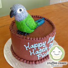 Parrot cake My birthday cakes Pinterest Birthday cakes and Cake