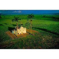 Photo by @davidalanharvey | Early morning light hits a Catholic Church in the middle of a sugar cane plantation in Bahia, Brazil. I had been photographing the cane cutters for several days for a NatGeo piece on Bahia when I came across this quilombo settlement and church deep inland. I could only imagine what it might look like on Sunday morning from the air. Yet I gambled it could be spectacular since the church faced east. So I drove several hours back to Salvador and tried to remember…