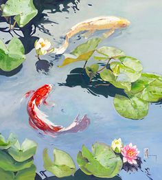 Hard Right by Chuck Larivey, Fine Art Reproduction, 40 x 36 x Water Lilies Painting, Lily Painting, Koi Art, Fish Art, Lotus Art, Japanese Drawings, Guache, Watercolor Artwork, Wildlife Art