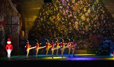 The Nutcracker, Boston Ballet.  Mom and I are going this year.