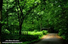 Take a relaxing drive on the beautiful Roaring Fork Motor Nature Trail.