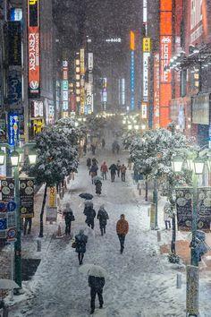 Snow in Shinjuku, Tokyo