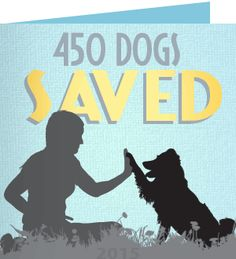Barbara F. just received a Care2 Thank You Note We Did It - The Dogs Are Safe! 450 Dogs Saved