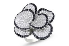 White and Black Cubic Zirconia Sterling Silver Flower Ring w/Black Rhodium - RSY_121488