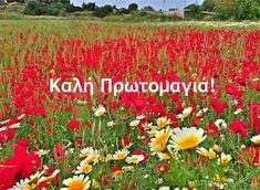 Πρωτομαγια Mina, Greek Quotes, Flowers Nature, Make A Wish, Holidays And Events, Happy Day, Good Morning, Diy And Crafts, Projects To Try