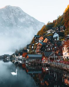 Lakeside Life & Homesteads In The Hills Hallstatt, Austria.🇦🇹🌲 You are in the right place about tr Places To Travel, Places To See, Travel Destinations, Nature Photography, Travel Photography, Hallstatt, Photos Voyages, Travel Aesthetic, Beautiful Places To Visit