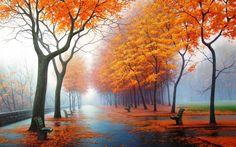 super HD autumn image