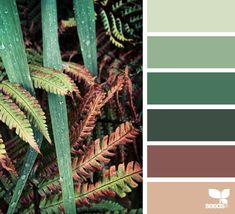 today's inspiration image for { color nature } is by . thank you, Helen, for another incredible image share! Nature Color Palette, Green Colour Palette, Green Color Schemes, Color Combos, Color Caoba, Forest Green Color, Tropical Colors, Design Seeds, Home And Deco