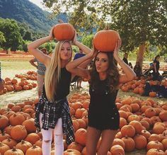Want to do a pumpkin patch photoshoot