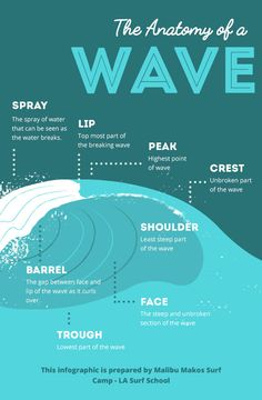 The Anatomy of a Wave [Infographic]
