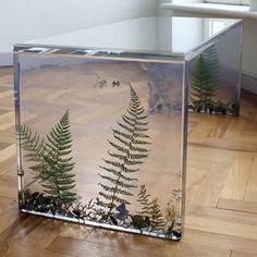 Ferns Table (ferns & forest debris, resin, acrylic)