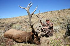Best Elk Units in Idaho | Unit 54 Trophy Elk Hunt