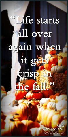 Life Starts quotes quote life autumn fall leaf pinterest pinterest quotes crisp autumn quotes fall quotes... this is the exact way i feel.. i just didnt know how to put it in words