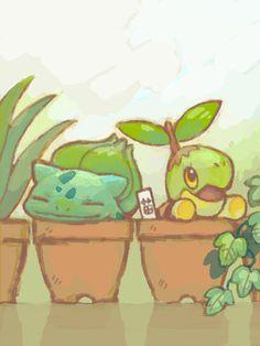 grass Pokemon: Bulbasaur and Turtwig Gif Pokemon, Lucario Pokemon, Pokemon Pins, Pokemon Fan Art, Plant Pokemon, Mudkip, Pokemon Stuff, Grass Type Pokemon, Pokemon Pictures