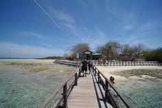 Hasil gambar untuk pulau menjangan Country Roads, Tours, Island, Beach, Water, Outdoor, Gripe Water, Outdoors, The Beach