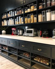 Mind-blowing Kitchen Pantry Design Ideas for Your Inspiration - Kitchen Pantry Cabinets Pantry Room, Kitchen Pantry Design, Kitchen Organization Pantry, Kitchen Pantry Cabinets, New Kitchen, Kitchen Decor, Pantry Ideas, Pantry Shelving, Cupboard Ideas
