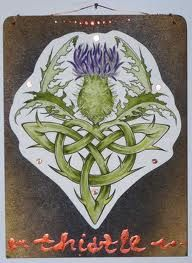 thistle tattoo - Google Search