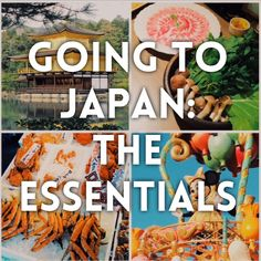 Important things to remember in Japan- check out the link for more!  https://stylion.me/2016/08/02/going-to-japan-essentials/