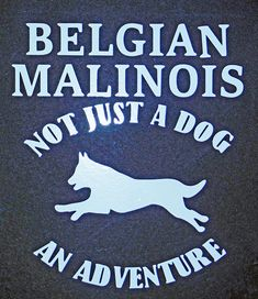 """You can't miss for the Malinois enthusiast! Belgian Malinois - Not Just a Dog, An Adventure Approximately 7""""x 5"""", standard in white. Please contact me with other color requests. Made from quality outdoor vinyl for durability, these decals will last for years! 