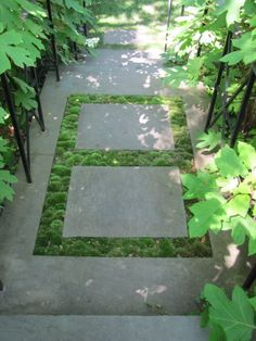 clever use of moss and pavers
