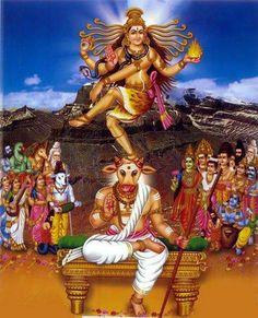 Lord Shiva dancing between the horns of Nandi, the high point of Pradosham prayers.