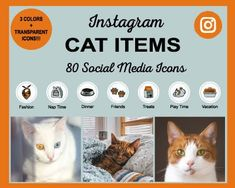 Cat-Items-Instagram-Highlight-Icons Instagram Story Template, Instagram Story Ideas, Social Media Icons, Social Media Graphics, Instagram Settings, Instagram Grid, Instagram Tips, Icon Photography, Real Estate Icons