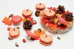 Macaron citrouilles et champignons Instagram : Le bonheur en cuisine