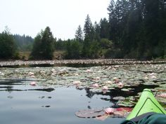 Spirit Lake, Idaho
