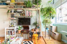Sala de estar com estante de trilho, muitas plantas e decoração colorida
