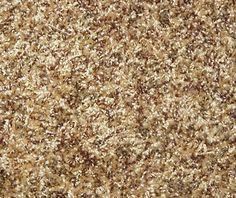 Mohawk Kimball Berber Carpet 15 Ft Wide Apartment Ideas