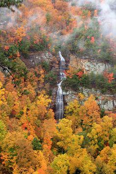 West rim falls, cloudland canyon state park, daniel creek canyon, dade county, GA