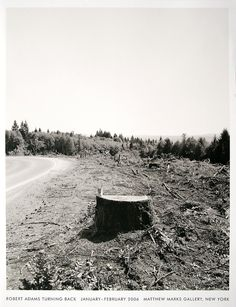 Robert Adams.  I love the imagery of this photo; a beer can on top of a tree stump.  This photo represents the way humans interact with the world; the tree stump representative of our destructive nature and the beer can representative of our lack of concern.