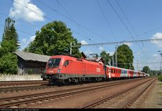 RailPictures.Net Photo: 1116 198 CD - Ceske Drahy 1116 at Velesin, Czech Republic by Roman Cifreund