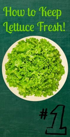 Skin Care And Health Tips: How to Keep Lettuce Fresh!